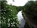 SO9388 : No1 Canal by Gordon Griffiths
