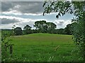 SK0060 : Leekfrith Tumulus by Whitty Lane by Neil Theasby
