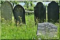 SX4563 : Bere Ferrers: St. Andrew's Churchyard by Michael Garlick