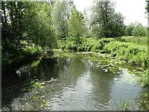 TM2659 : River Deben at Kettleburgh by Adrian S Pye