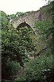 NZ2055 : Causey Arch by Chris Allen