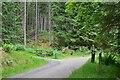 NT2841 : Bike trail junction, Glentress Forest by Jim Barton