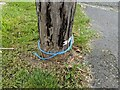 TF0820 : Pulling cords by Bob Harvey