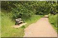 TF8944 : Norfolk Coast Path by Richard Croft