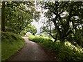 SK2462 : Lees Road by David Lally