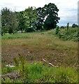 NS7362 : Site of Carnbroe Mains Farm by Jim Smillie
