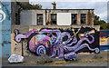 J5081 : Street art, Bangor by Rossographer