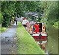 SJ4365 : Moored narrowboats along the Shropshire Union Canal by Mat Fascione
