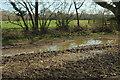 SX8573 : Slightly flooded field, Templer Way by Derek Harper