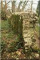 SX7963 : Wall by the Dart by Derek Harper