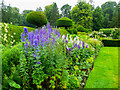 NY4535 : Herbaceous border and topiary in the walled garden, Hutton in the Forest by Humphrey Bolton