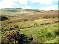 NY2829 : The Cumbria Way near Skiddaw Forest Ford by Adrian Taylor