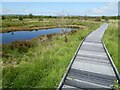SN6862 : Boardwalk at Cors Caron by Philip Halling