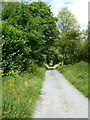 SN6862 : Former railway trackbed at Cors Caron by Philip Halling