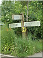 TL8738 : Signpost on Henny Road by Geographer