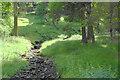SK1592 : Ditch Clough by Bill Boaden