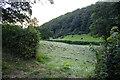 SJ1713 : Hay field by P Gaskell