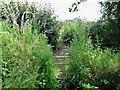SK4237 : Footbridge on a field path by Ian Calderwood