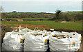 SX8160 : Field by Weston Lane by Derek Harper