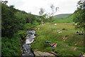 SK1695 : River Derwent at Slippery Stones by Bill Boaden