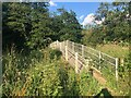 SK0048 : Footbridge over River Churnet by Philip Cornwall