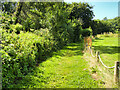 ST4971 : Path behind the National Trust Car Park at Tyntesfield by David Dixon