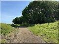 SP3765 : Sutton Spinney, Offchurch Greenway by Robin Stott