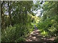 SP3766 : Northeast on the Offchurch Greenway, northeast of Sutton Spinney by Robin Stott