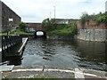 SJ3392 : The way to the docks, below Stanley Lock 4 by Christine Johnstone