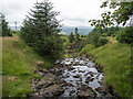 D1822 : Stream near Glenariff by Rossographer