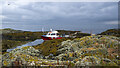 J6086 : The 'Bangor Boat' at Mew Island by Rossographer