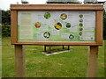 SU8799 : Fabulous Fungi Information Board at Holy Trinity Church (1) by David Hillas