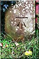 NY5536 : Benchmark on gatepost at field gateway on west side of B6412 south of Great Salkeld by Roger Templeman