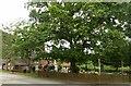 SK5141 : Broad Oak, Strelley by Alan Murray-Rust