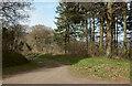 SX8383 : Track and lane junction, Barton Down by Derek Harper