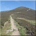 NN9269 : Path on Carn Liath by Richard Webb