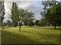 TF0820 : A splash of sunlight by Bob Harvey
