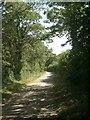 SS8878 : The Bridgend Circular Walk on farm track north of Merthyr Mawr by eswales