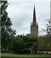 TG2308 : Norwich - The cathedral from the Great Hospital grounds by Rob Farrow
