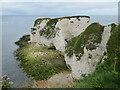 SZ0582 : Old Harry Rocks, near Swanage by Malc McDonald