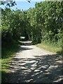 SS8878 : Track on Bridgend Circular Walk approaching patch of woodland near Whitney Farm by eswales