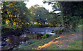 NT9928 : Weir, Wooler Water by habiloid