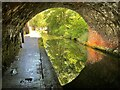 SP0686 : The Worcester & Birmingham Canal by Graham Hogg