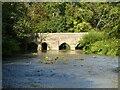 SP4724 : Heyford Bridge by Philip Halling