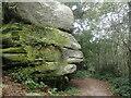 TQ5535 : Sphinx at Eridge Rocks by Marathon