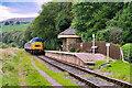 SD7920 : Class 45 Diesel Locomotive approaching Irwell Vale by David Dixon
