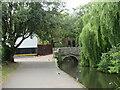 SZ1692 : Convent Walk, Christchurch by Malc McDonald