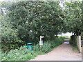 SZ3294 : Public footpath near Lymington by Malc McDonald