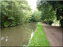 SK1705 : Towpath of the Birmingham & Fazeley canal by Richard Law