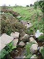 SE1246 : Backstone Beck, Ilkley Moor by Malc McDonald